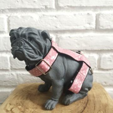 arnes-perro-toy